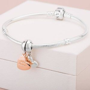 🎆NWT Mother and Daughter Heart Split Dangle Charm